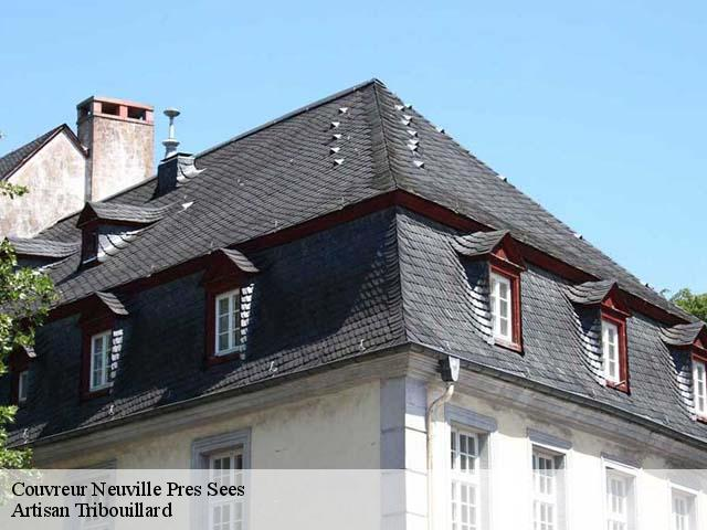 Couvreur  neuville-pres-sees-61500